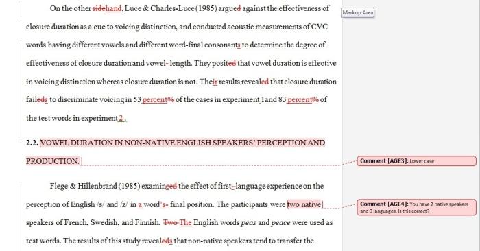 Dissertation Editor and proofreader
